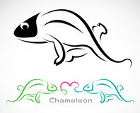 Vector image of an chameleon Royalty Free Stock Image