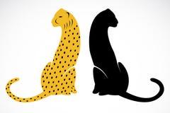 Vector image of an cheetah Stock Photos