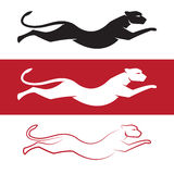 Vector image of an cheetah. On white background and red background vector illustration