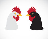 Vector image of an chicken head Royalty Free Stock Photography