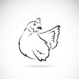 Vector image of chicken Royalty Free Stock Photo