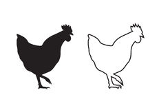 Vector image of an chicken Royalty Free Stock Image