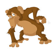 Chimpanzee. Vector image of Chimpanzee scrathes its back Stock Images