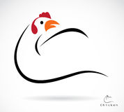 Vector image of an cock Stock Images