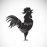 Vector image of an cock Stock Photography