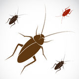 Vector image of an cockroach Royalty Free Stock Images