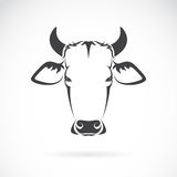 Vector image of an cow head Stock Image