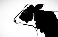 Vector image of an cow Royalty Free Stock Photos