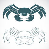 Vector image of an crab Stock Photography