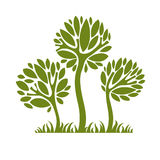 Vector image of creative tree, nature concept. Art symbolic illu. Stration of plant, forest idea Royalty Free Stock Photos