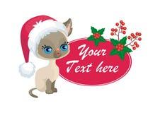 Little Siamese kitten Stock Photography