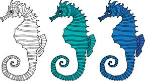 Vector image of decorative sea horses Royalty Free Stock Photos