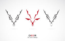 Vector image of an deer design. On white background Stock Photos