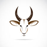 Vector image of an deer head (impala). On white background Stock Image