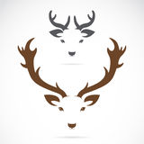 Vector image of an deer head Royalty Free Stock Photography
