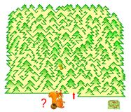 Logic puzzle game with labyrinth for children and adults. Help the squirrel gather nuts in the forest. Find the way and draw line. Vector image. Developing royalty free illustration