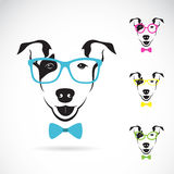 Vector image of a dog (Bull terrier) glasses. On white background. Fashion royalty free illustration