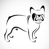 Vector image of an dog (bulldog). On white background royalty free illustration