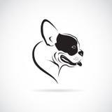 Vector image of an dog (bulldog) Stock Image