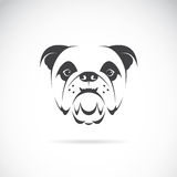 Vector image of an dog face (bulldog) Stock Image