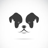 Vector image of an dog face. Stock Image