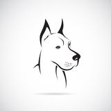 Vector image of an dog (Great Dane). On white background Royalty Free Stock Photo