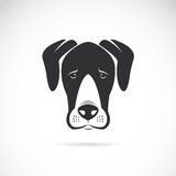 Vector image of an dog (Great Dane). On white background Stock Images