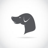 Vector image of an dog head Stock Images