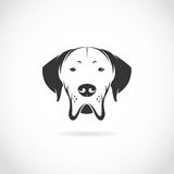 Vector image of dog head. On white background royalty free illustration