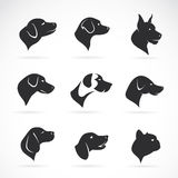 Vector image of an dog head Royalty Free Stock Image