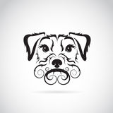Vector image of an dog (Irish terrier) Stock Photography