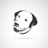 Vector image of an dog labrador head Royalty Free Stock Photography