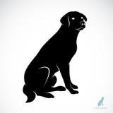 Vector image of an dog labrador Royalty Free Stock Photography