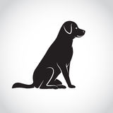 Vector image of an dog labrador Stock Images