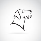 Vector image of an dog labrador Stock Image