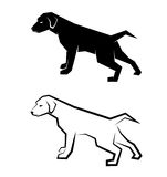 Vector image of an dog labrador Stock Image