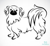 Vector image of an Dog (Pekingese) Royalty Free Stock Image