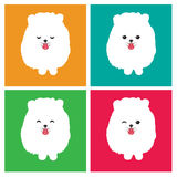 Vector image of an dog  pomeranian Royalty Free Stock Image