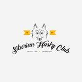 Vector image of a dog siberian husky design. On white background and yellow background, Logo, Symbol, Animals. Siberian Husky Club Royalty Free Stock Image
