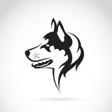 Vector image of a dog siberian husky Royalty Free Stock Photo