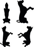 Vector Image - dog silhouette in beg pose  on white background Stock Photography