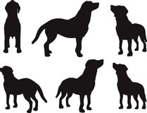 Vector Image - dog silhouette in default pose  on white background Royalty Free Stock Image