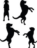 Vector Image - dog silhouette in default pose  on white background Stock Image