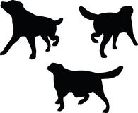 Vector Image - dog silhouette in default pose  on white background Royalty Free Stock Photo