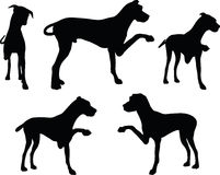 Vector Image - dog silhouette in shake hands pose  on white background Stock Photos
