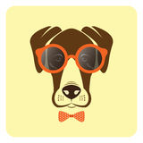 Vector image of dog wearing glasses. Stock Photography