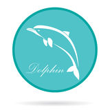 Vector image of an dolphin Stock Photos