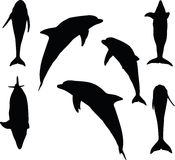 Vector Image - dolphin silhouette  on white background Stock Photo