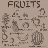 Vector image of the drawn fruit on a brown background with the inscriptions under each icon. Graphic vintage illustration. vector illustration