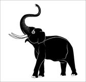 Vector image of an elephant Royalty Free Stock Photos